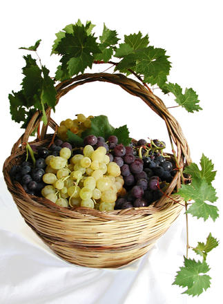 grapes-in-basket-1327703